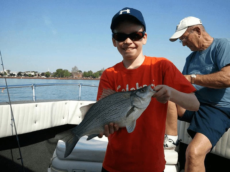 Silver Bass Fishing on the Detroit River | Lakeside Fishing